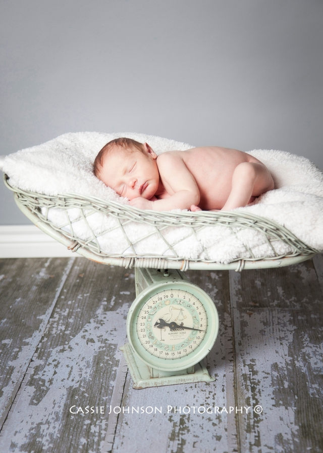 Newborn Photography | Vintage Scale